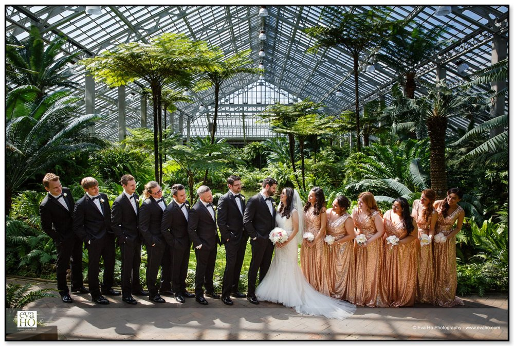 The entire wedding party at the Garfield Park Conservatory